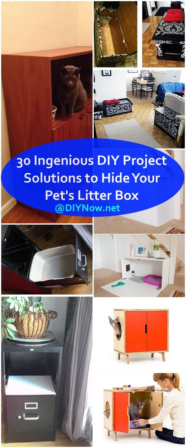30 Ingenious DIY Project Solutions to Hide Your Pets Litter Box