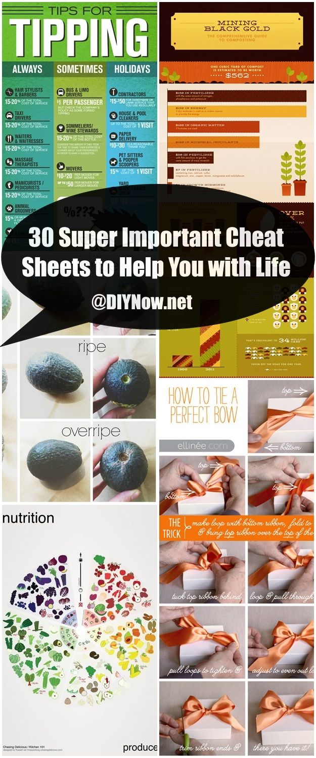 30 Super Important Cheat Sheets to Help You with Life