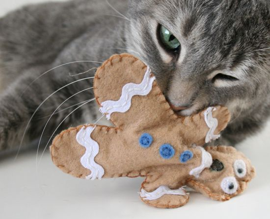 35 awesome things you can make for your pet page 11 for Kitten toys you can make