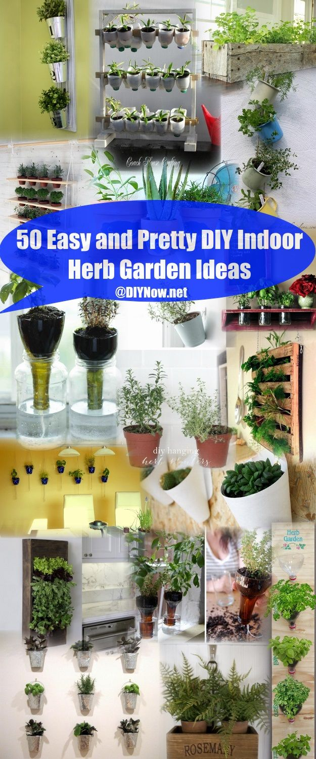 100 diy indoor garden indoor succulent garden diy simple ac