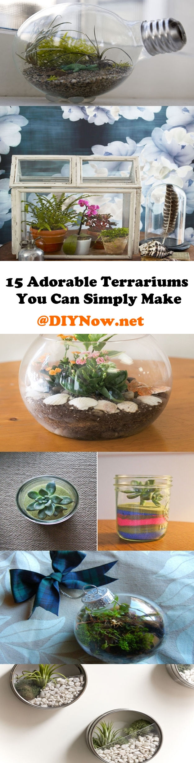 15 Adorable Terrariums You Can Simply Make