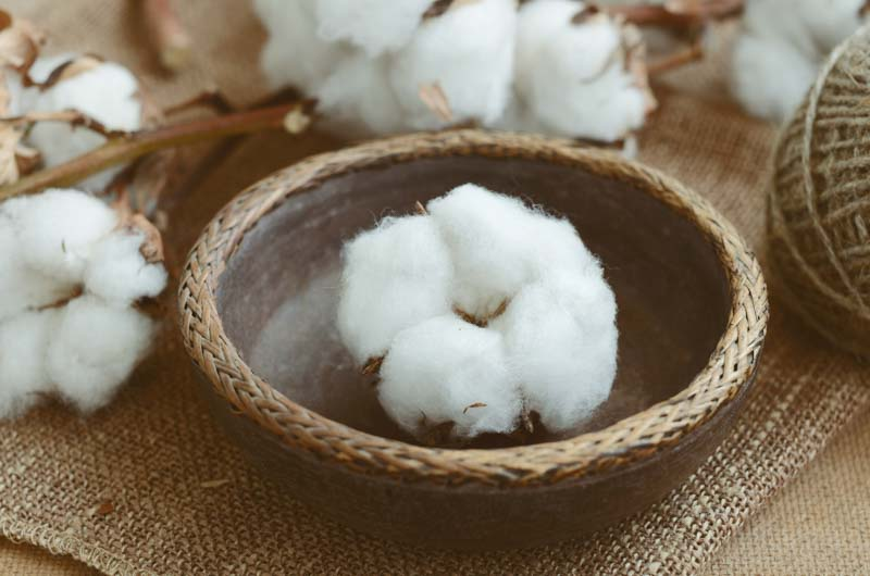 Simple Outer Ear Cotton Ball Remedy